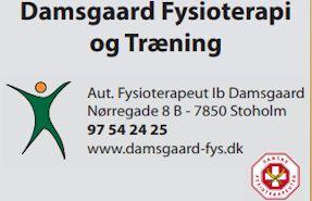 Damsgaard Fys2